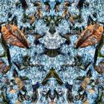 """""""DRIED LEAVES FROZEN IN ICY BLUE ROCK, V8, Edit C"""" by nawfalnur"""