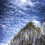 """Nubes de primavera"" by Nadril_RB"