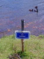 No Fishing!