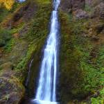 """0257 Starvation Creek Falls"" by vincentlouis"