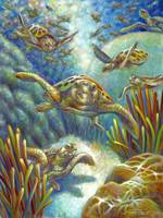 Flying Loggerhead Turtles