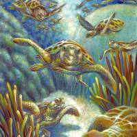 Flying Loggerhead Turtles by Nancy Tilles