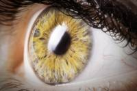 Beautiful_Eye_Photography_Pam_20x30