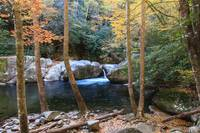 Big Creek & Cataloochee