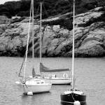 """Three Sailboats in Black and White"" by foxvox"
