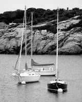 Three Sailboats in Black and White