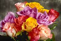 Beautiful Bouquet Of Multicolor Roses