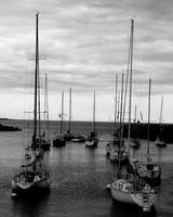 Sailboats at Harbor Mouth
