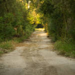 """Dirt Road"" by ValeriesGallery"