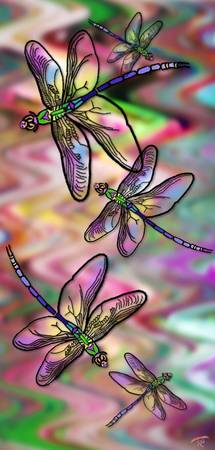 Dragonfly Land 2