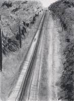 Harney Road Train Tracks