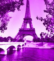 Eiffel Tower Seine River Violet cropped