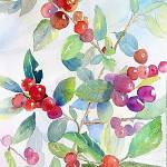 """""""Berries by the Walk"""" by lindahaile"""