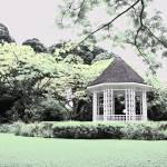"""Digital Infra Red Botanic Garden Singapore"" by sghomedeco"