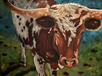 Brother Longhorn finished