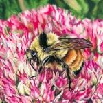 """""""Bee"""" by KellyEddington"""