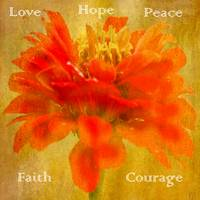 Red Zinnia with Inspirational Text Picture