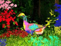 Colorful Lucy Goosey