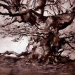 """The Old Oak indian ink and sepia watercolour"" by anthonybarrow"