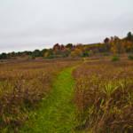 """Northern Fields In Fall"" by DigitalFantastique"