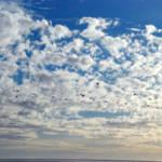 """""""Breaking Clouds"""" by DigitalFantastique"""