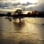 """The Trent Washlands in Full Flood (35079-RDA)"" by rodjohnson"