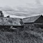 """Desolate old Barn"" by patsphotos"
