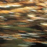 """""""Streaks of Light Art"""" by sharpeye"""