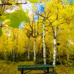 """""""Table in Autumn"""" by nostalgiawest"""