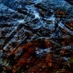 """Windswept"" by CherylCharette"