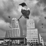 """A crow perched on a high building."" by pavelgospodinov"