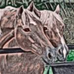 """horses"" by x90studios"