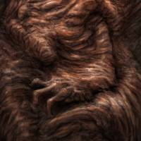 Face of the Beast Art Prints & Posters by Ethan Harris