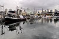 False Creek 37