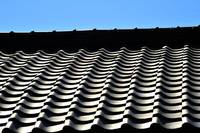 Japanese Roof