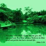 """""""so loved the world, Botanic garden, John 3:16"""" by sghomedeco"""