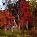 """""""Warren Lake Reflections ll"""" by bavosiphotoart"""