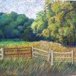 """D:\Woods and Gate"" by ediehamblin"