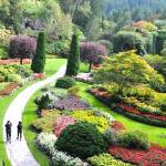 """Butchart Gardens SG1"" by Johnson-Miles"