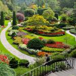 """Butchart Gardens SG2"" by Johnson-Miles"