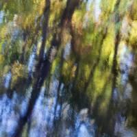 autumn impressions 2 by julie scholz