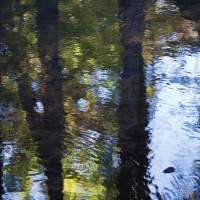 autumn impressions 3 by julie scholz