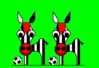Zebras waiting for the Cup to begin at 2010 FIFA W