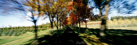 Autumn Road in Motion PA