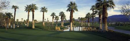 Palm Springs Golf Course CA