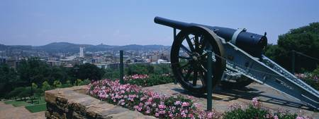 Flowers around a cannon