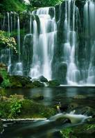 Waterfall Hebden Gill N Yorshire England