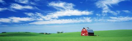 Red Barn in Field WA