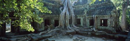 Wat Temple Complex of Ta-Prohm Cambodia