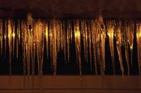 Icicles Reflecting Light At Night